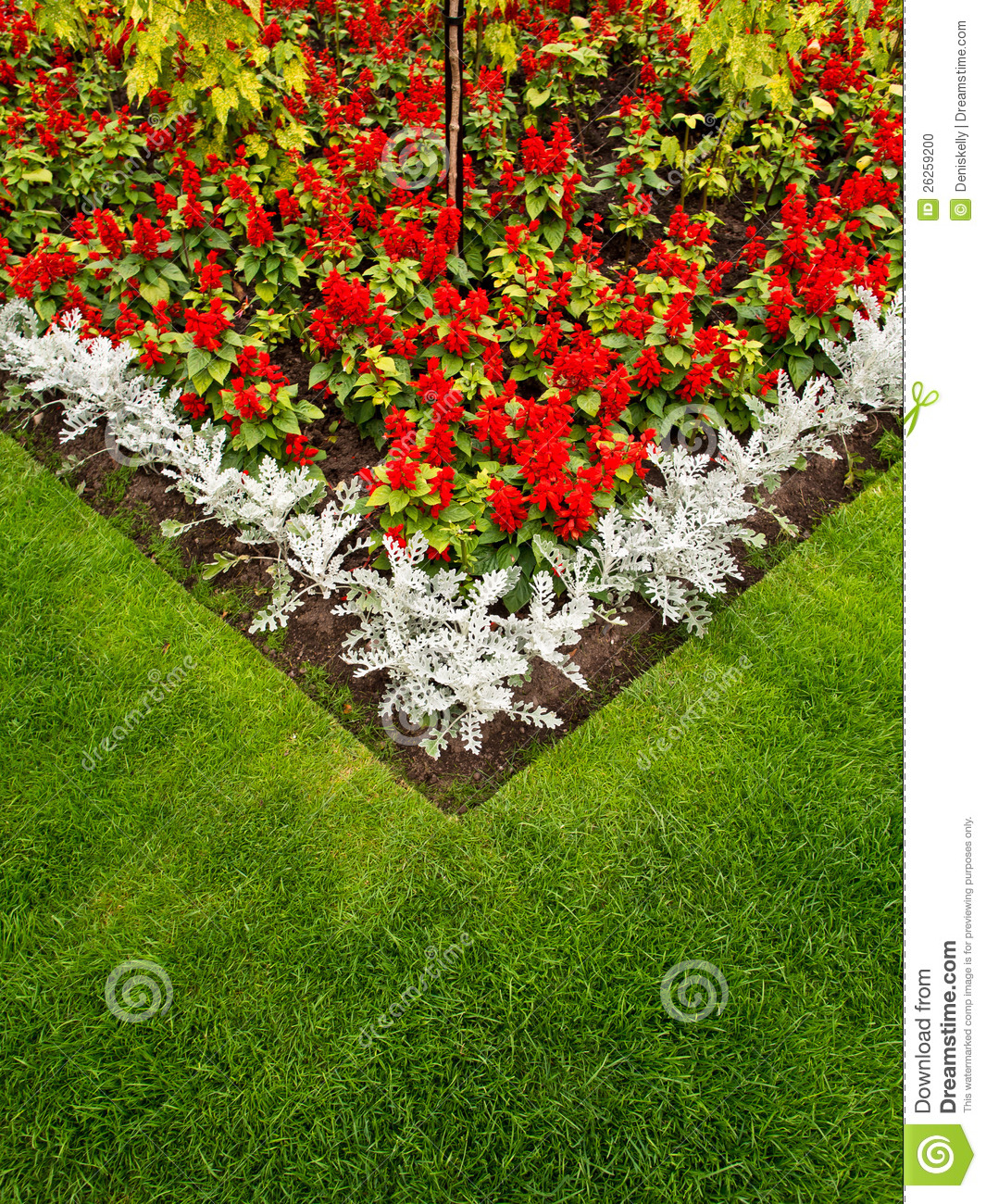 Colorful garden flower bed and grass lawn stock photo for Grass plants for flower beds