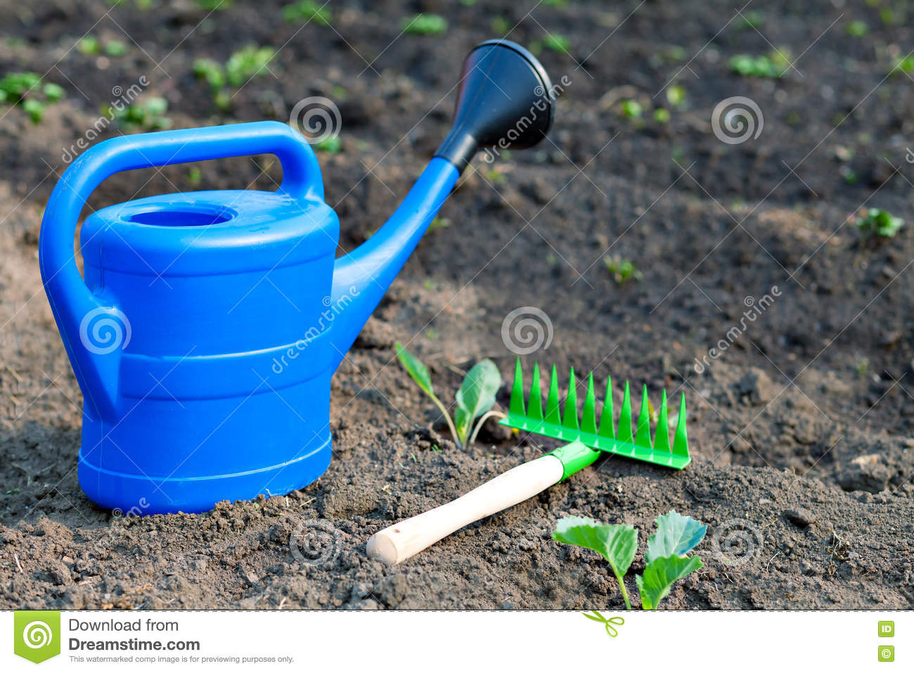 Colorful Garden Tools A Blue Plastic Watering Can And