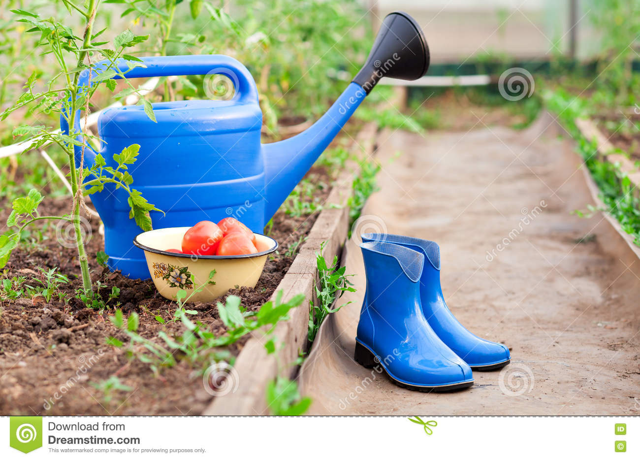 Colorful garden tools watering can and rubber boots for Gardening tools watering