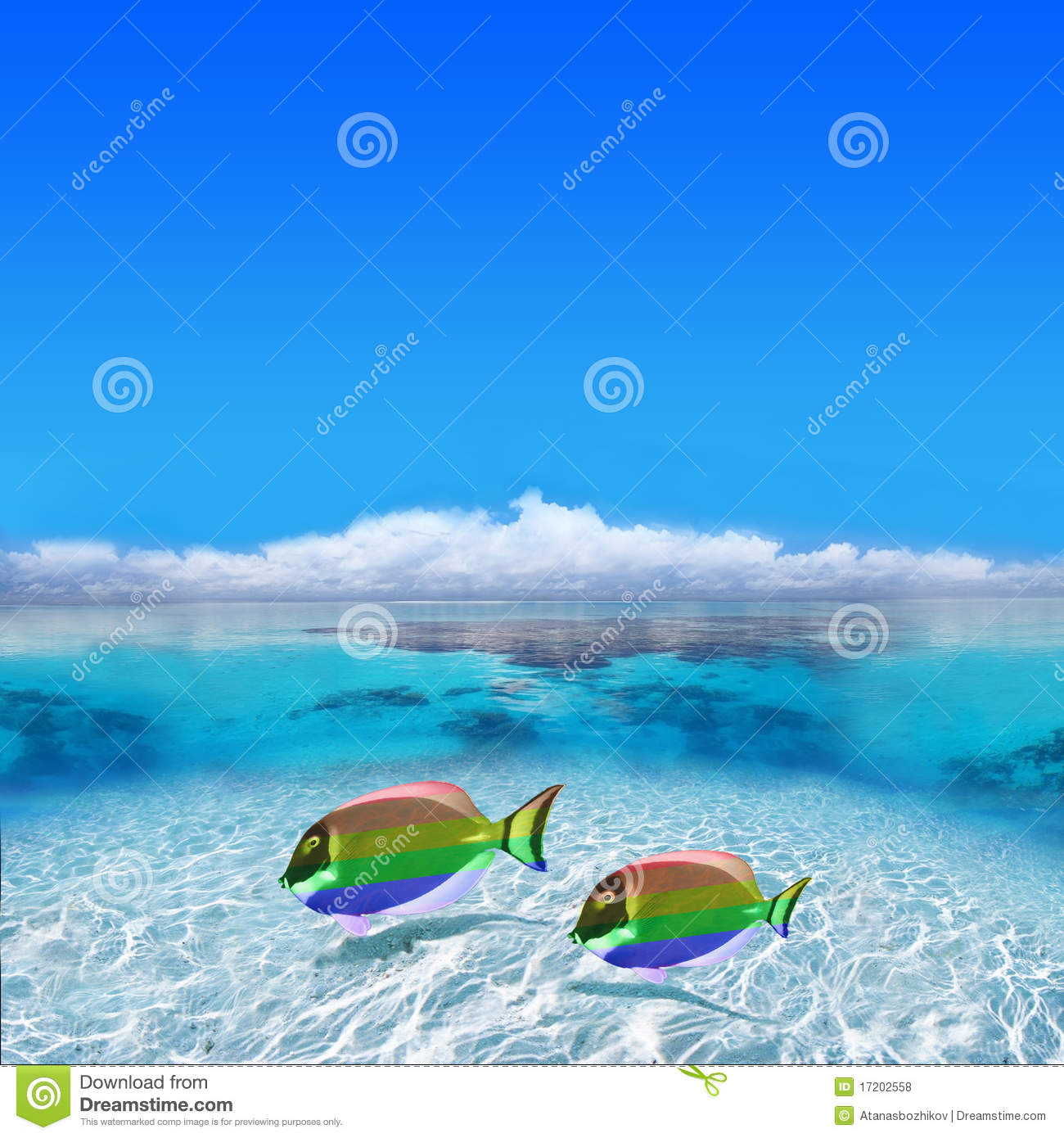 Colorful Gay Fishes