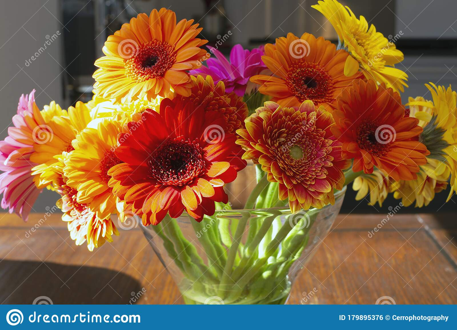 Colorful Gerber Daisies In A Glass Vase On A Wooden Table ...