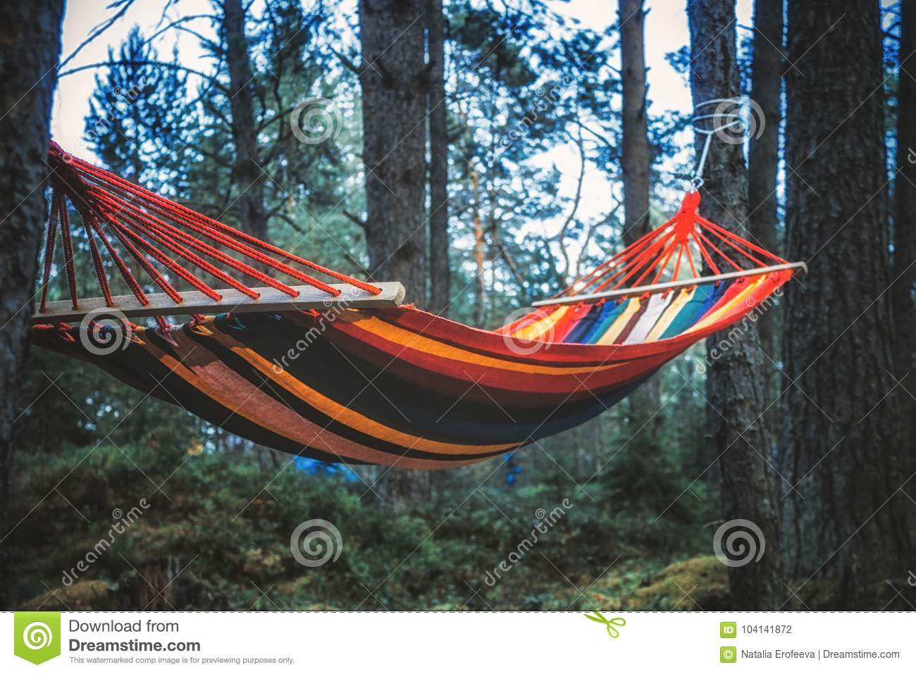 colorful hammock hanging in the forest selective focus stock photo