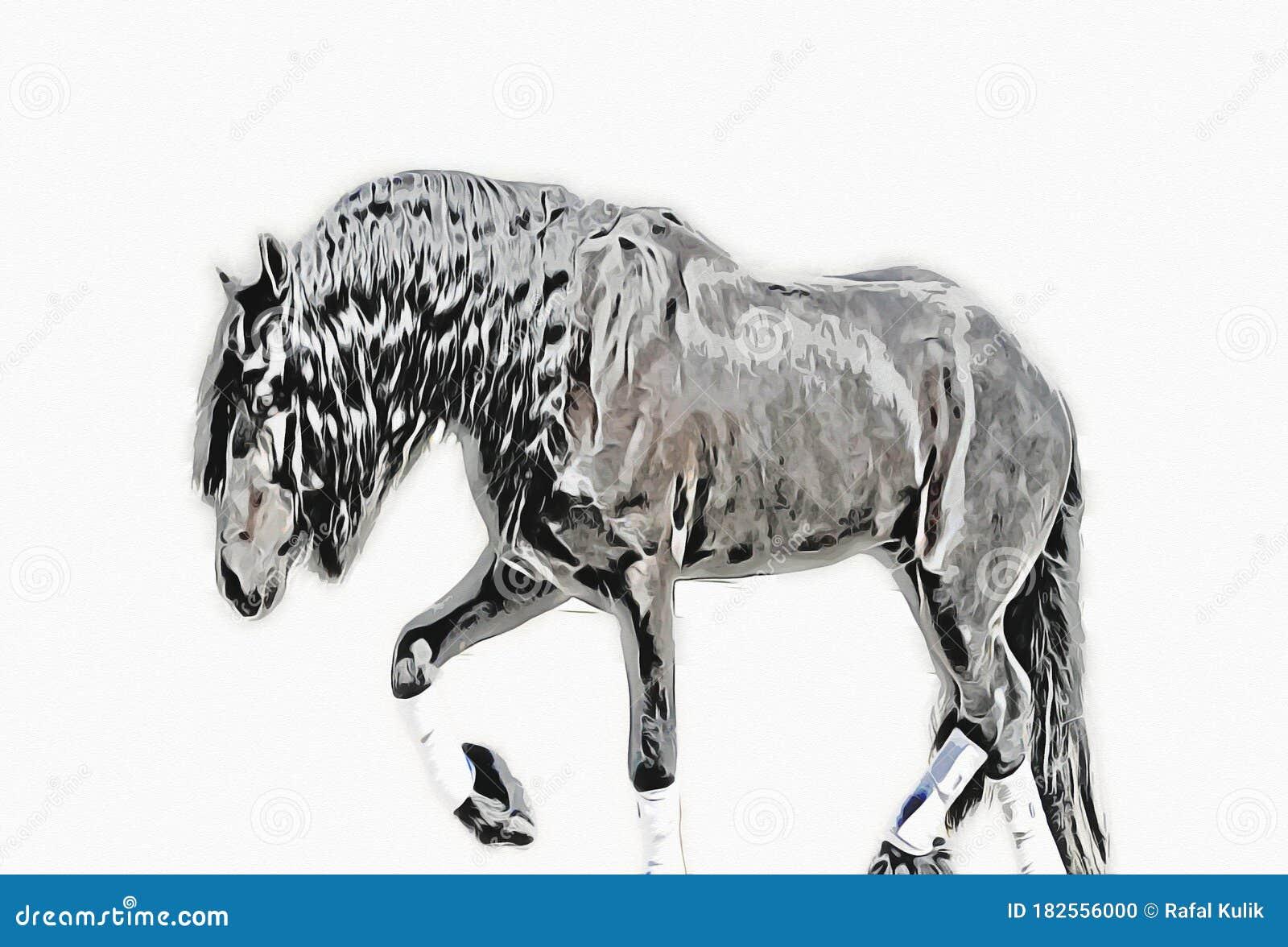 Colorful Horse Art Illustration Grunge Painting Stock Illustration Illustration Of Painting Grunge 182556000
