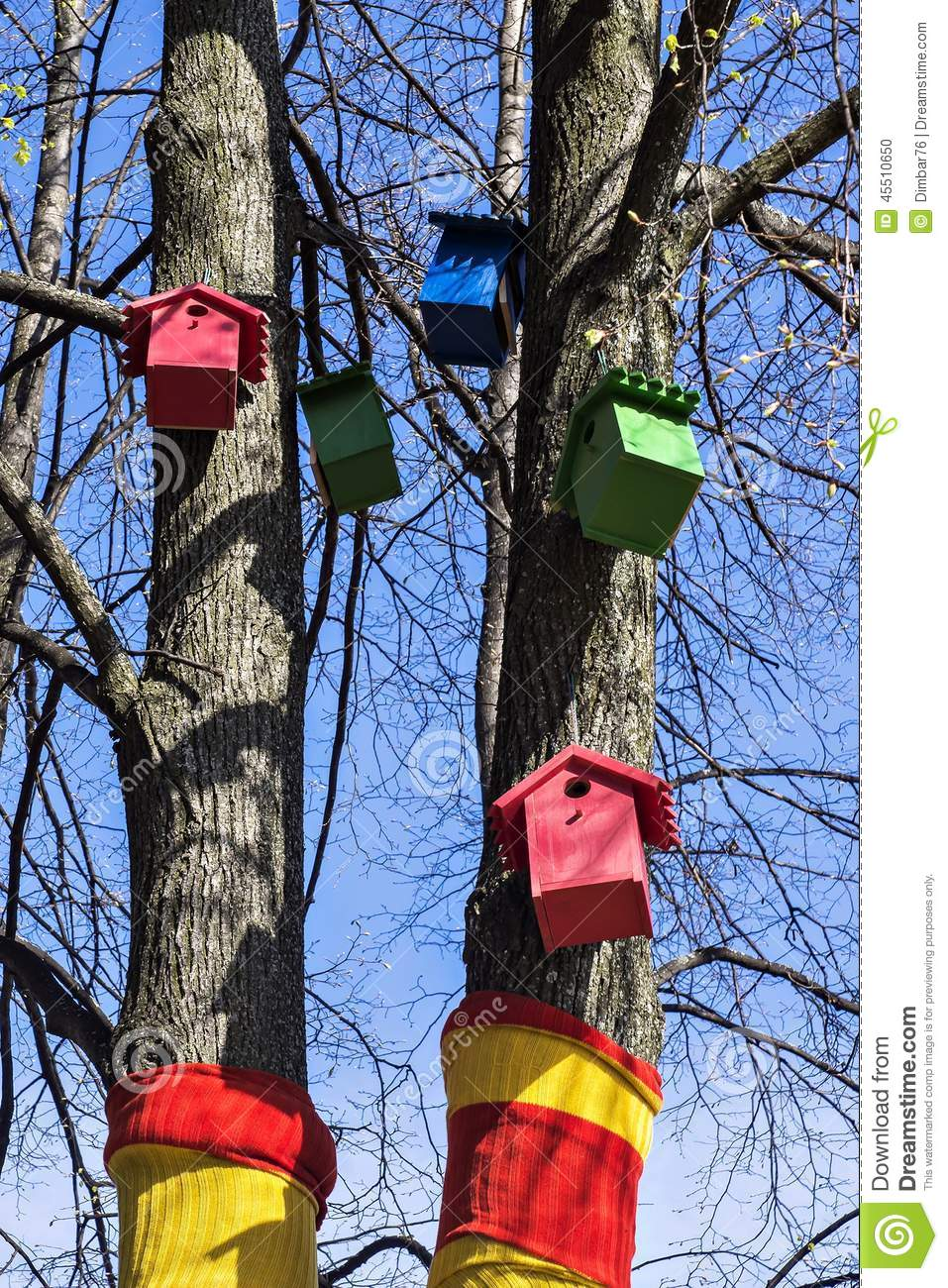 Colorful houses for birds on the tree stock photo image for Colorful tree house