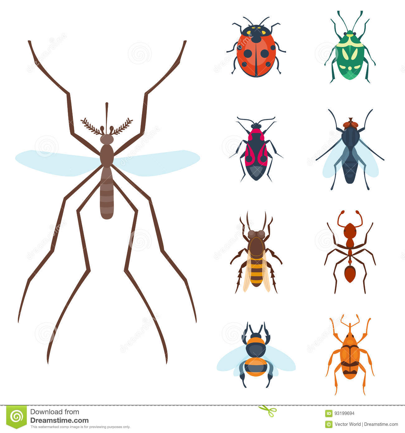 Colorful insects icons isolated wildlife wing detail summer bugs colorful insects icons isolated wildlife wing detail summer bugs wild vector illustration biocorpaavc Gallery