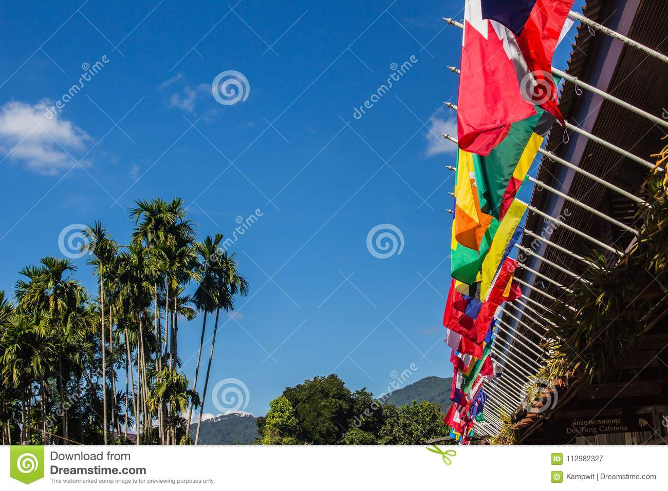 Colorful of international flags on clear blue sky.