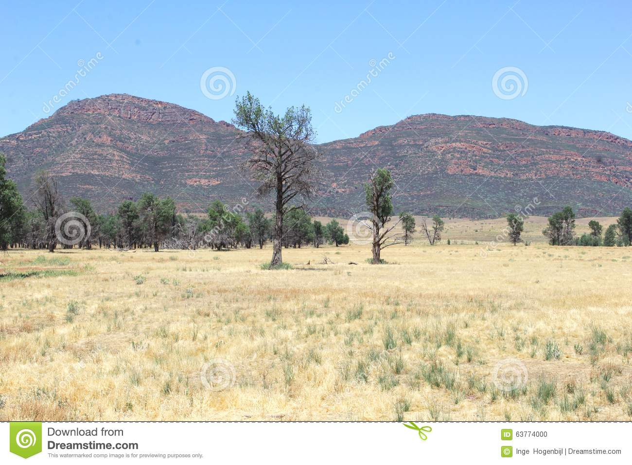 Colorful landscape in flinders ranges national park south for South australia landscape