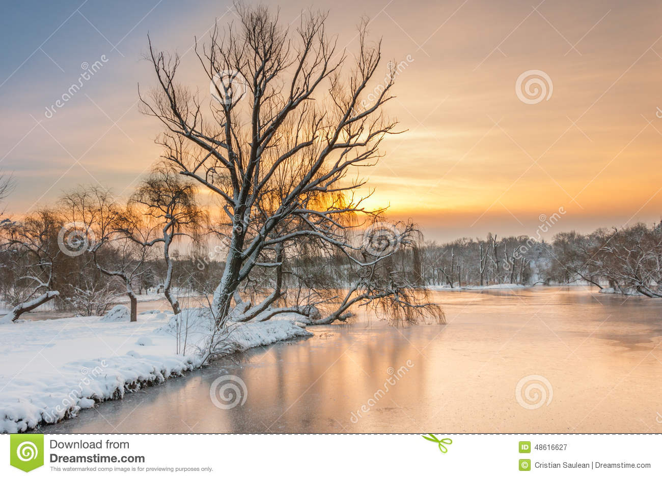Download Colorful Landscape At The Winter Sunrise In Park Stock Image - Image of color, bright: 48616627