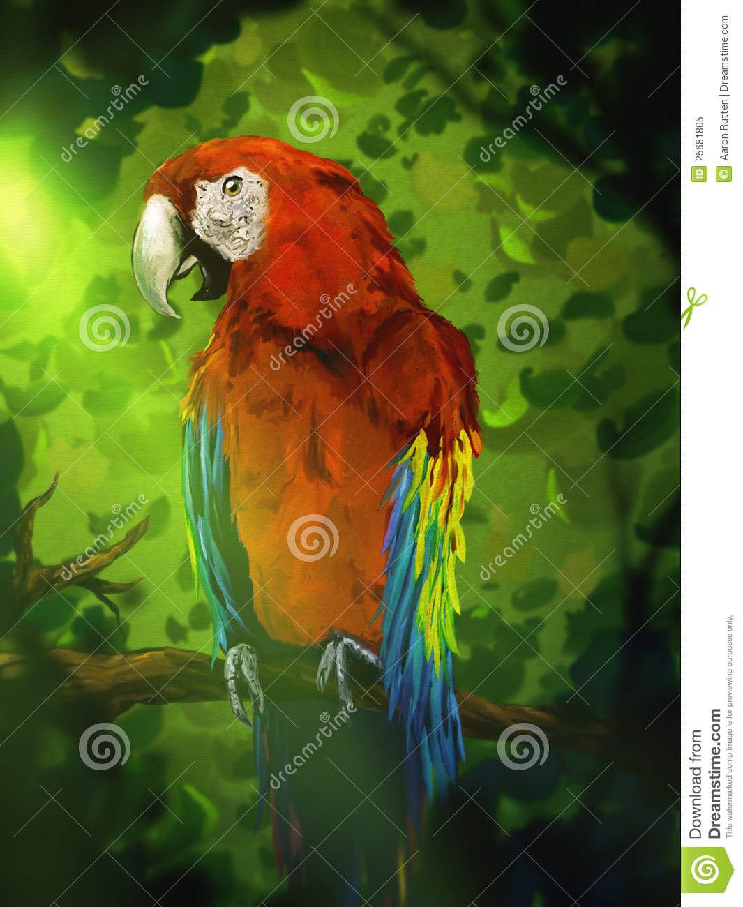 Colorful Macaw Parrot Digital Painting Royalty Free