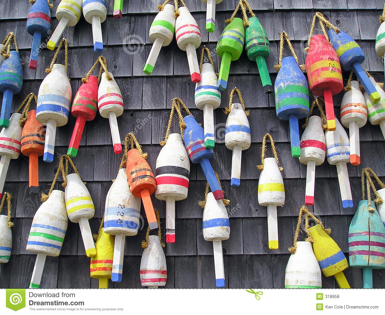 Colorful Maine Lobster Buoys Stock Photo Image 318958