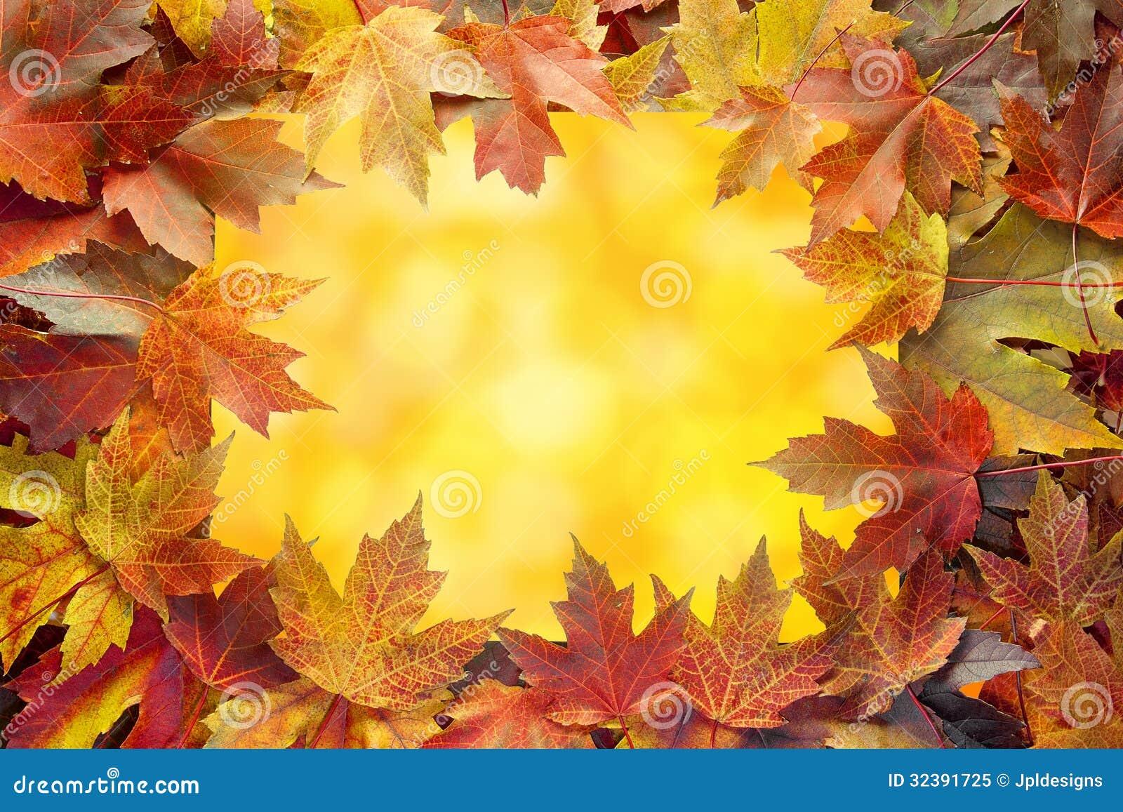 autumn fall tree backgrounds - photo #43