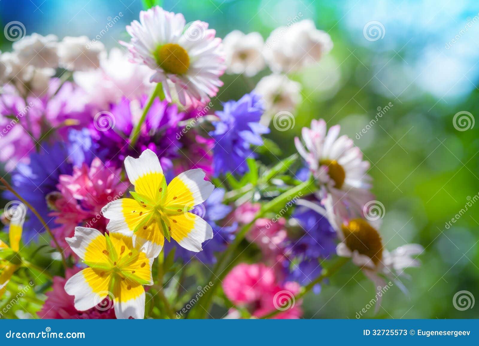summer flower retro sunshine - photo #37