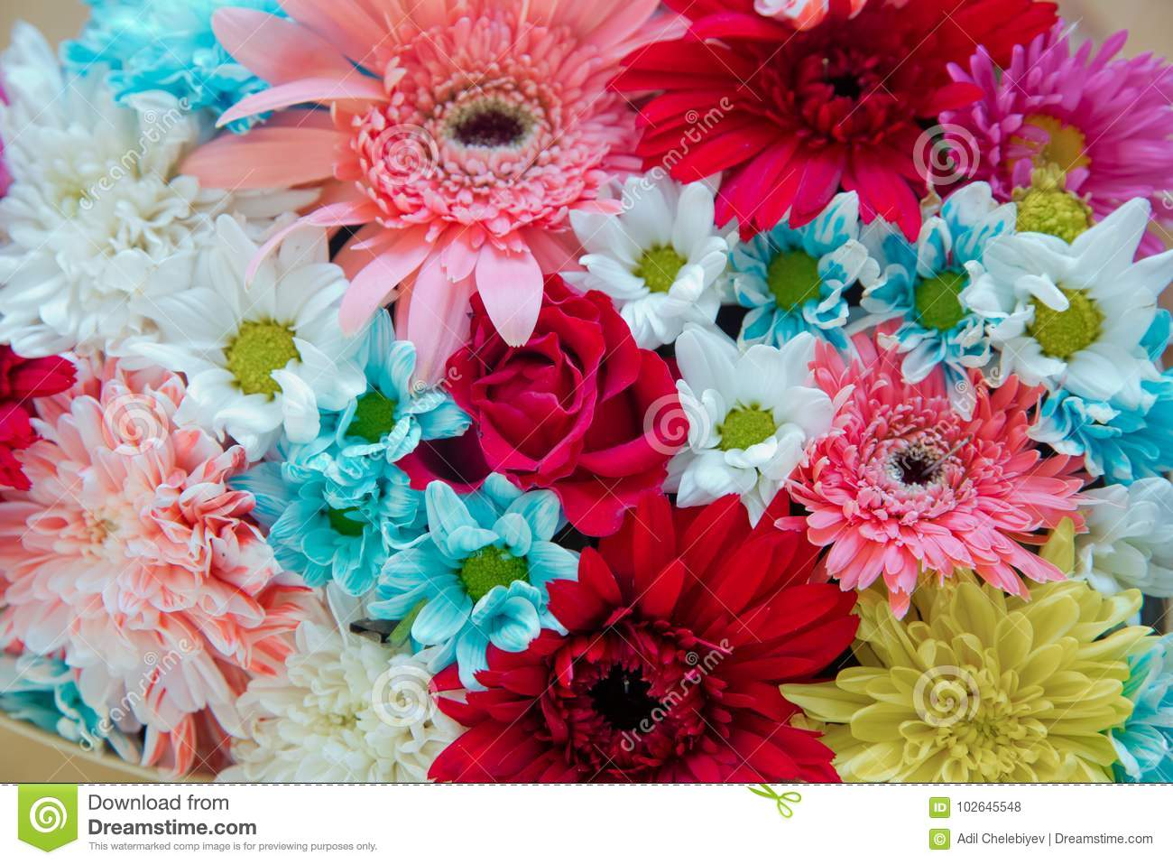 Colorful Mixed Flowers . Mixed Flower Arrangement: Various Flowers ...