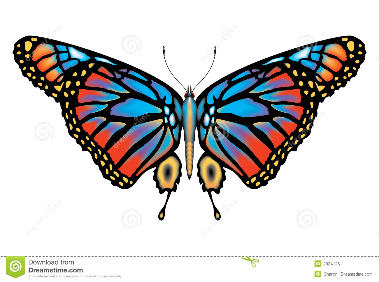 Colorful Monarch Butterfly Isolated Stock Vector Illustration Of
