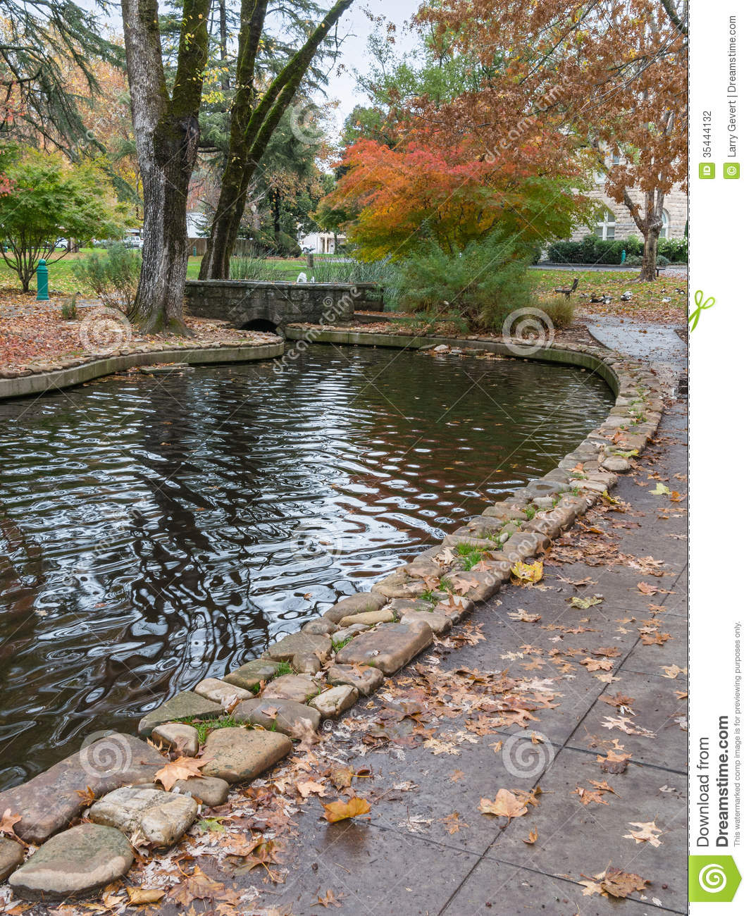 Colorful pond sonoma california stock photography for Colorful pond fish