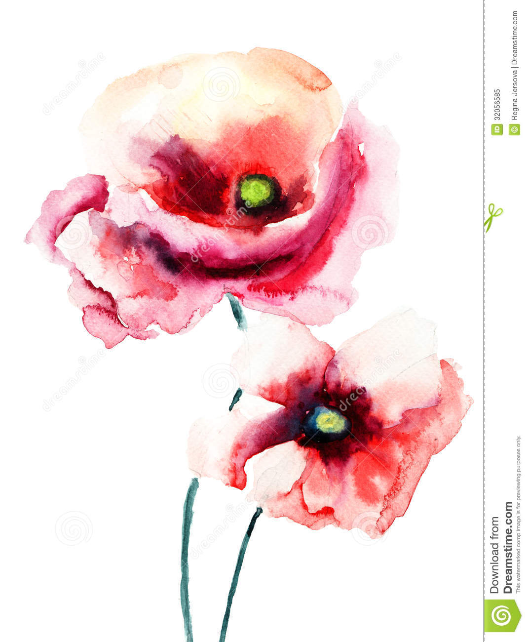 Colorful poppy flowers stock illustration illustration of colorful poppy flowers mightylinksfo