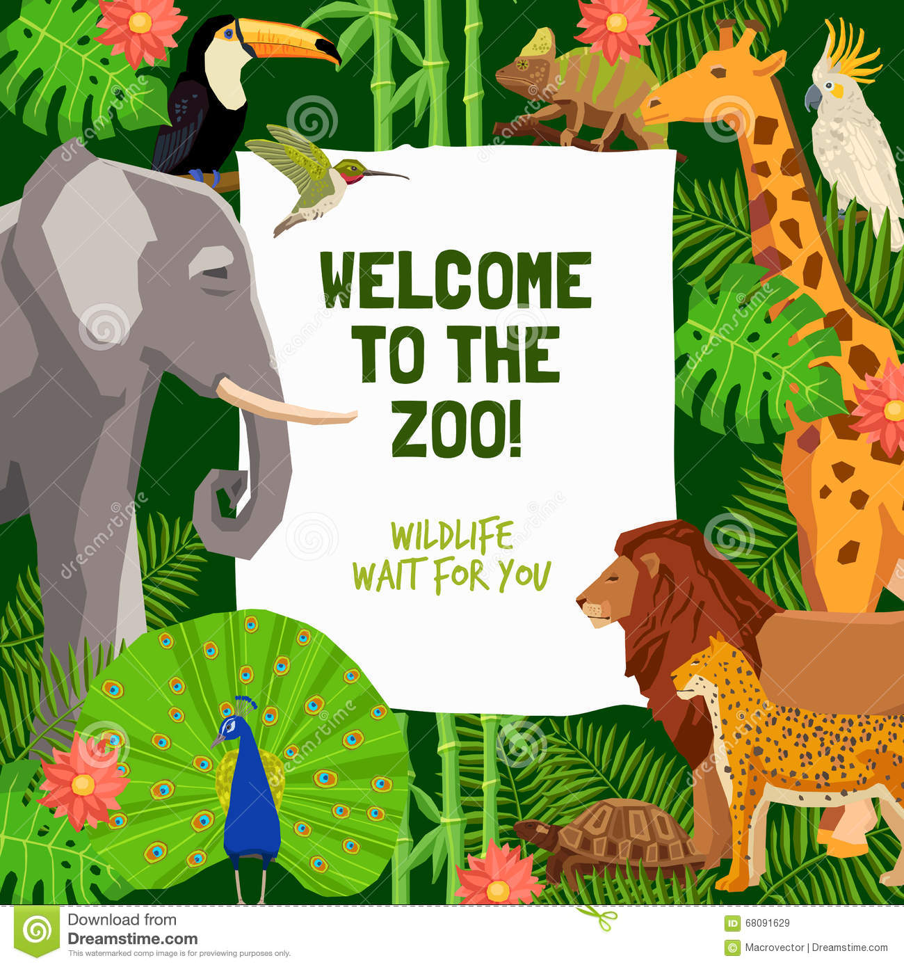 Colorful Poster With Invitation To Visit Zoo Stock Vector