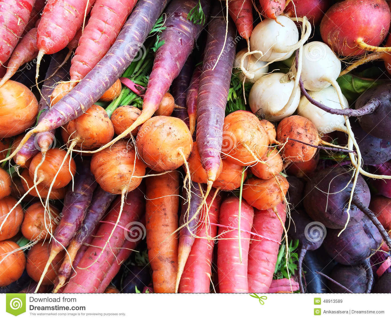 Colorful root vegetables