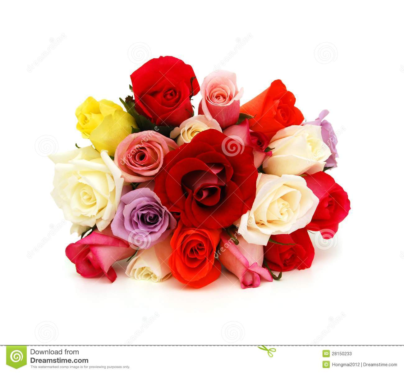 Colorful Roses, Beautiful Flower Bouquet Stock Photos ...