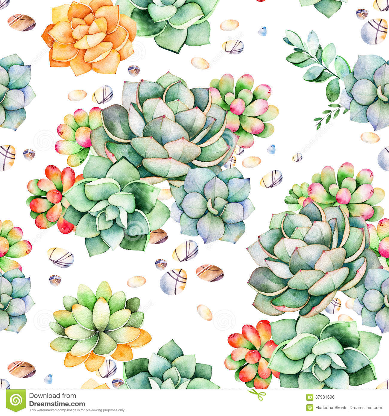 Colorful Seamless Pattern With Succulents Plants Pebble Stones