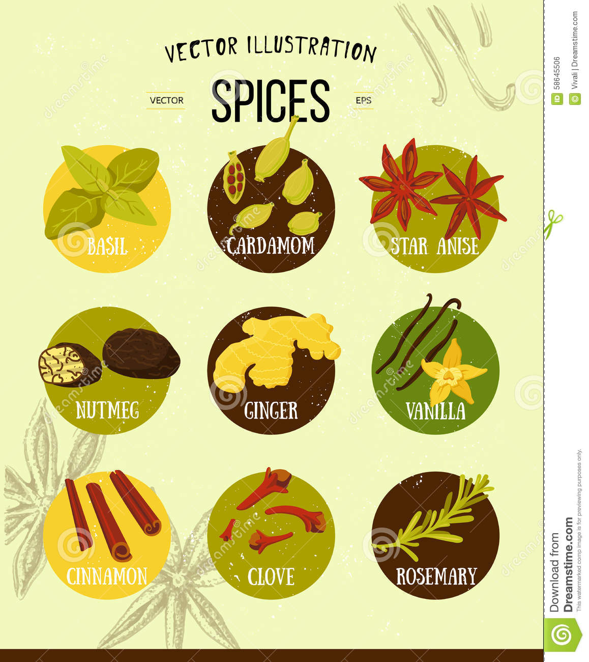 Colorful set of spices...