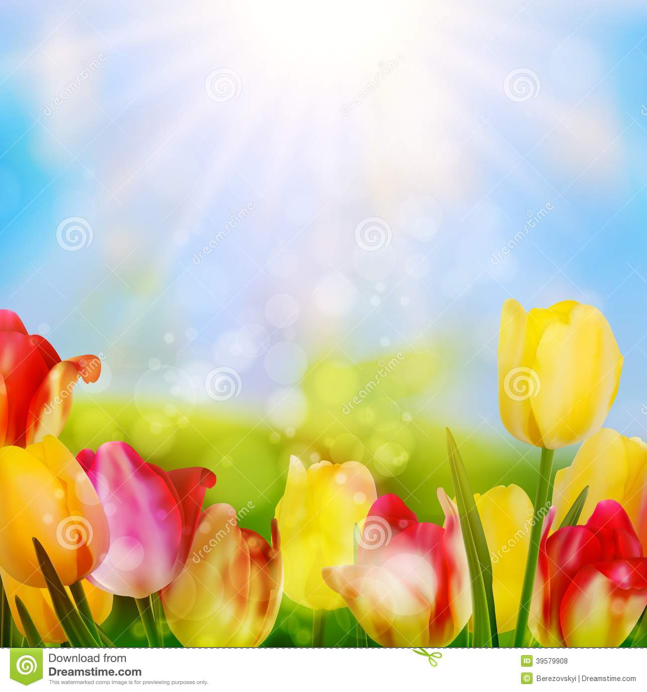 Colorful spring flowers tulips. EPS 10