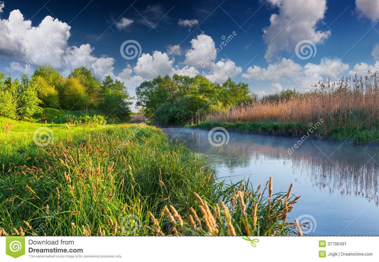 Download Colorful Spring Landscape On Misty River Stock Image - Image of outdoor, forest: 37796491