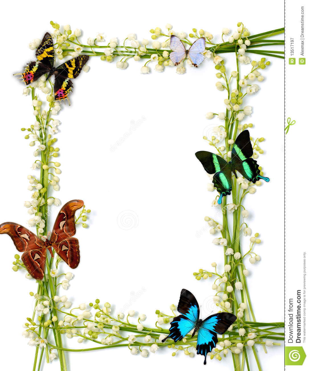 Colorful Summer Frame With Butterflies Stock Image - Image of love ...