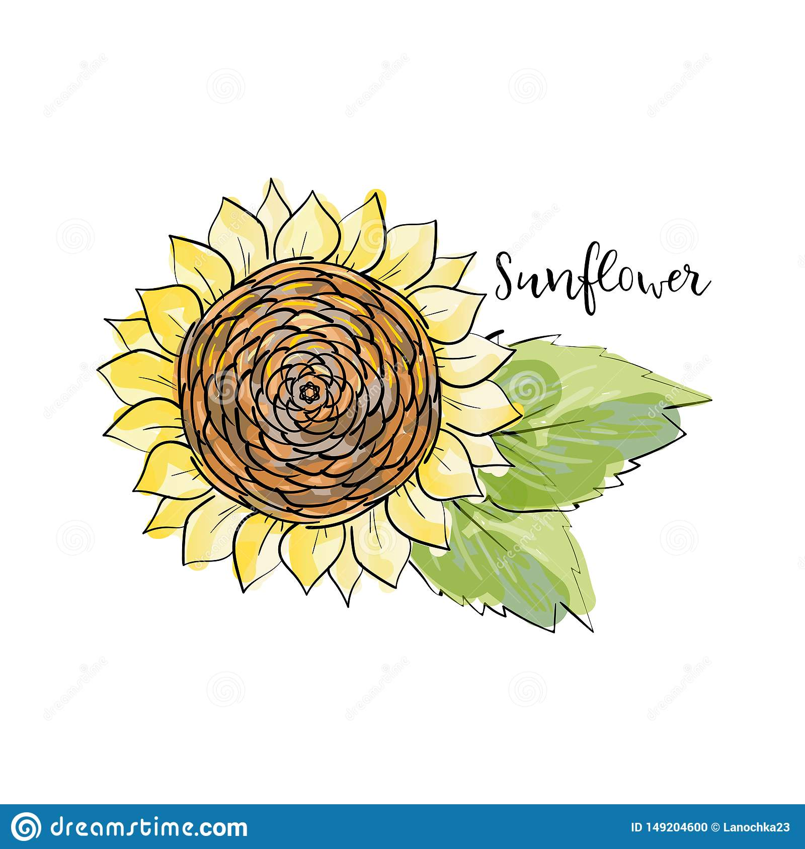 Colorful summer sketch, watercolor marker copic style. Bright and blurred sunflower with leaves. Lettering inscription sunflower.