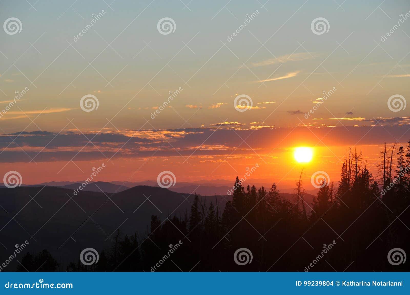 Sunset over Trees Cedar Breaks Utah