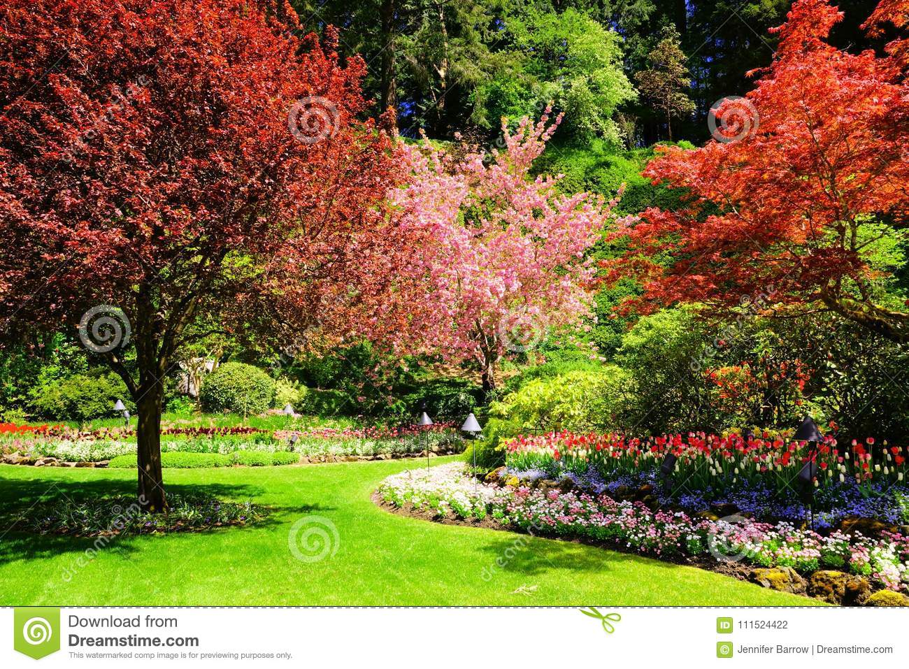 Colorful Trees And Flowers Of A Beautiful Landscaped Garden During