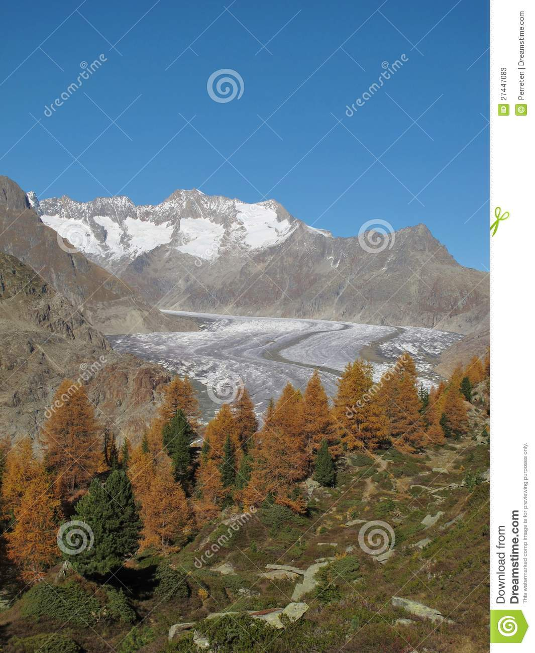 Colorful Trees, Glacier And Mountains