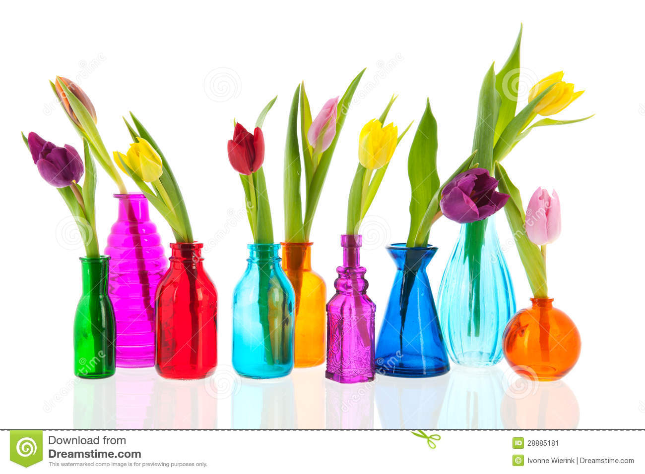 Colorful tulips in glass vases stock image image of white colorful tulips in glass vases reviewsmspy