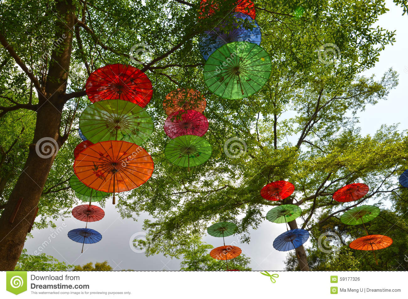 Colorful Umbrellas Hanging On Trees Stock Photo - Image of tree ...