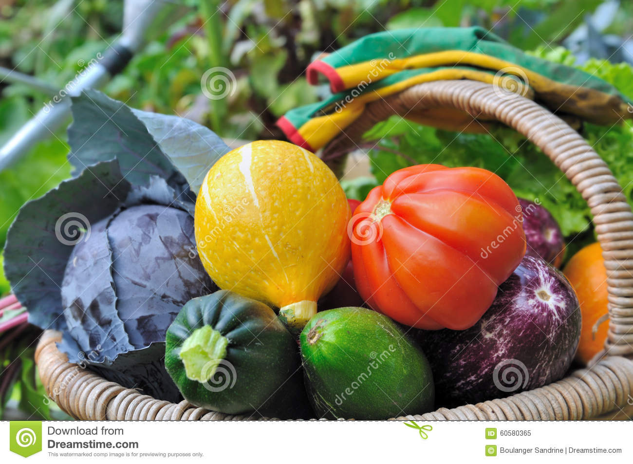 Colorful vegetables in basket stock photo image 60580365 for Beautiful vegetables