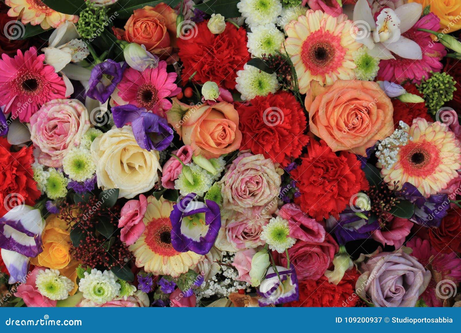 Colorful wedding flowers stock image. Image of chrysanthemum - 109200937