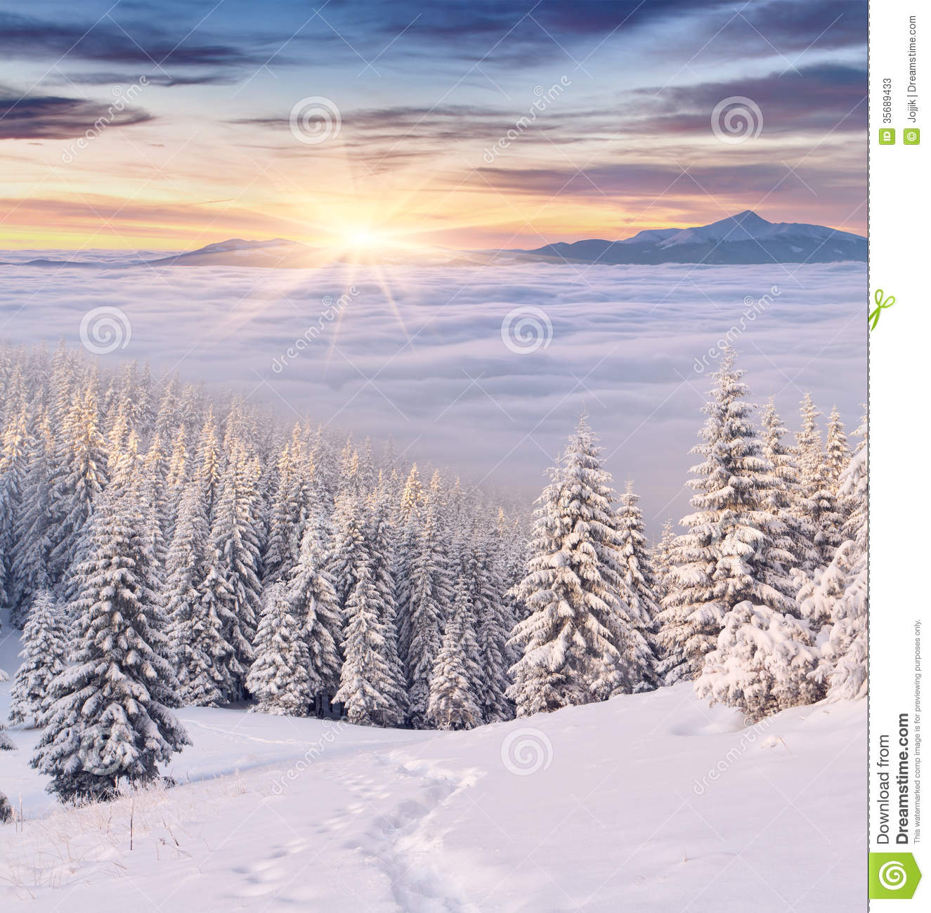 Colorful Winter Morning In Mountains Stock Photos