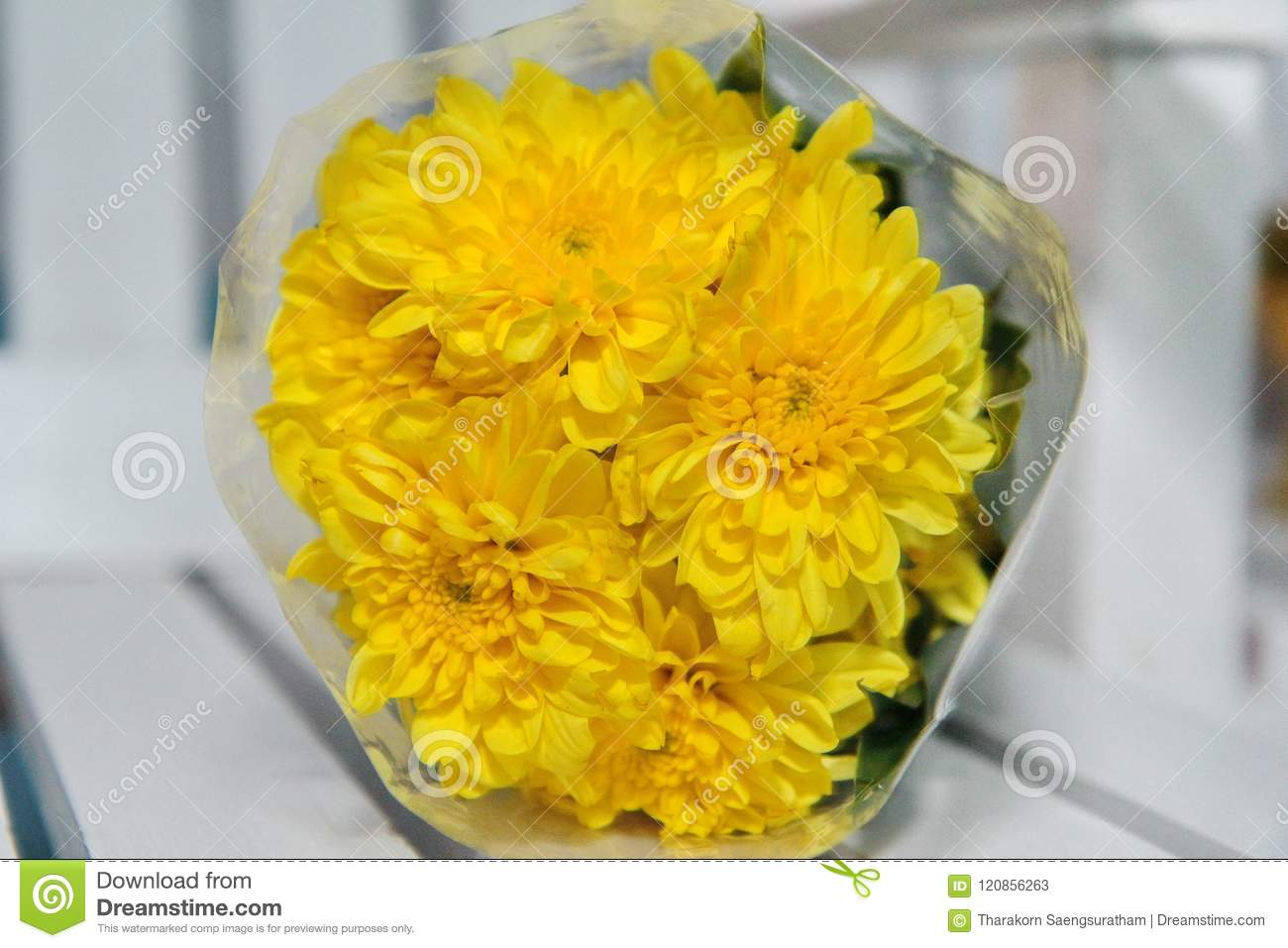 Colorful yellow flowers bouquet is a combination rests on white colorful yellow flowers bouquet is a combination rests on white mightylinksfo