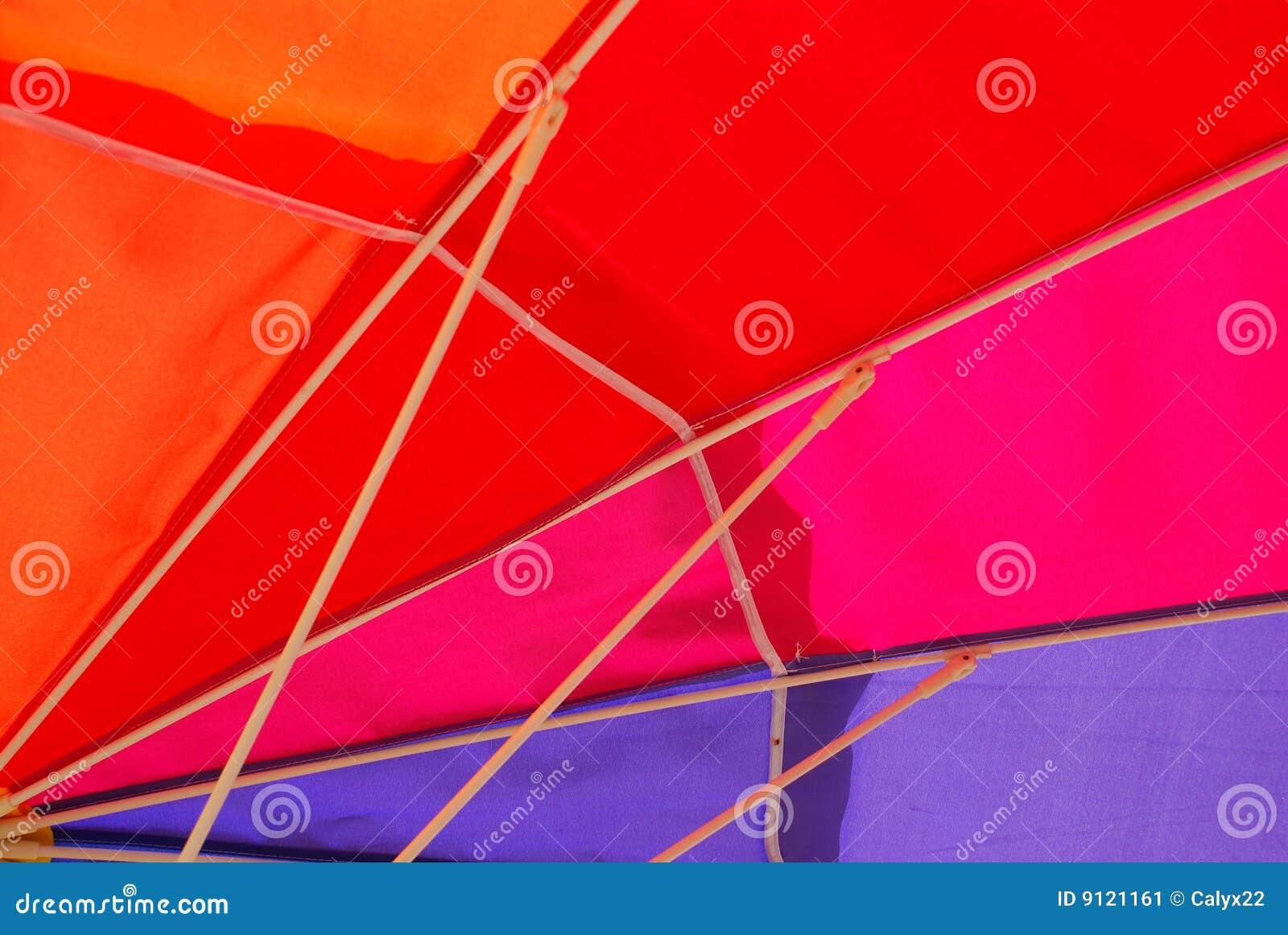 Colori immagine stock immagine di tropicale canvas - Immagine di lucertola a colori ...
