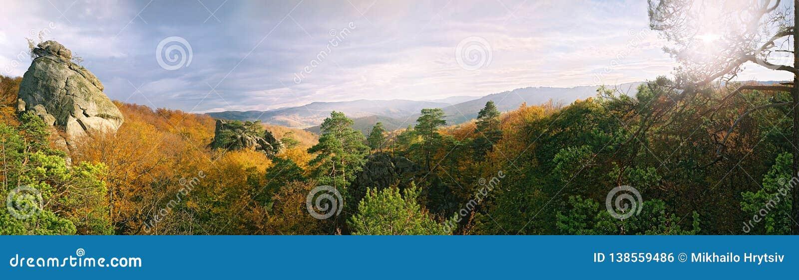 Colori caldi della foresta nelle montagne