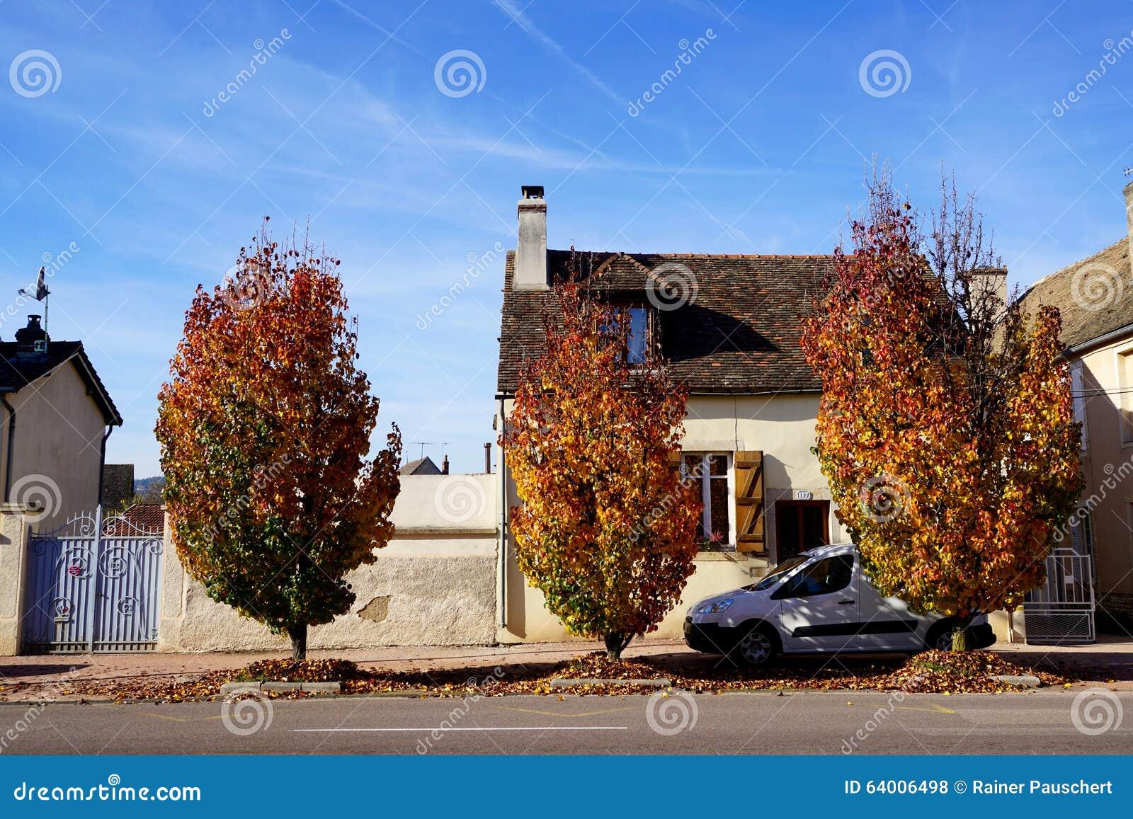 Colori dell 39 autunno in francia fotografia stock immagine - Immagine dell albero a colori ...
