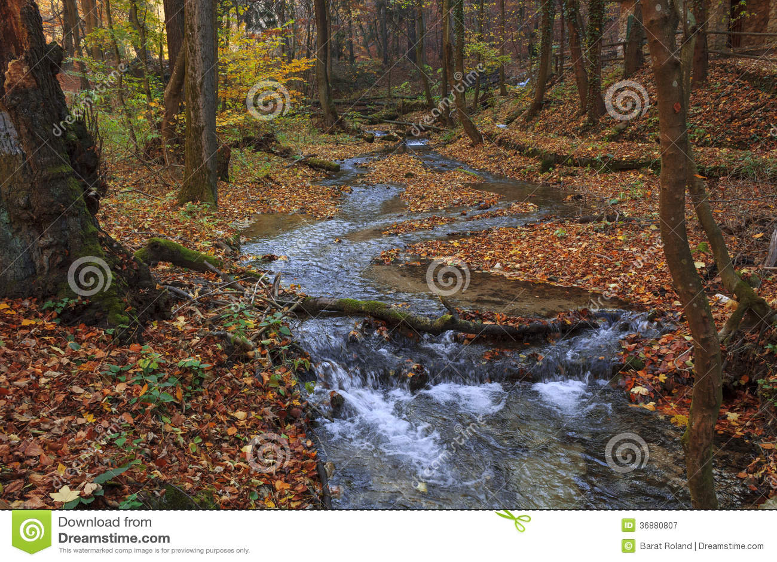 Download Colori Di Autunno In Un'insenatura Immagine Stock - Immagine di montagna, arancione: 36880807