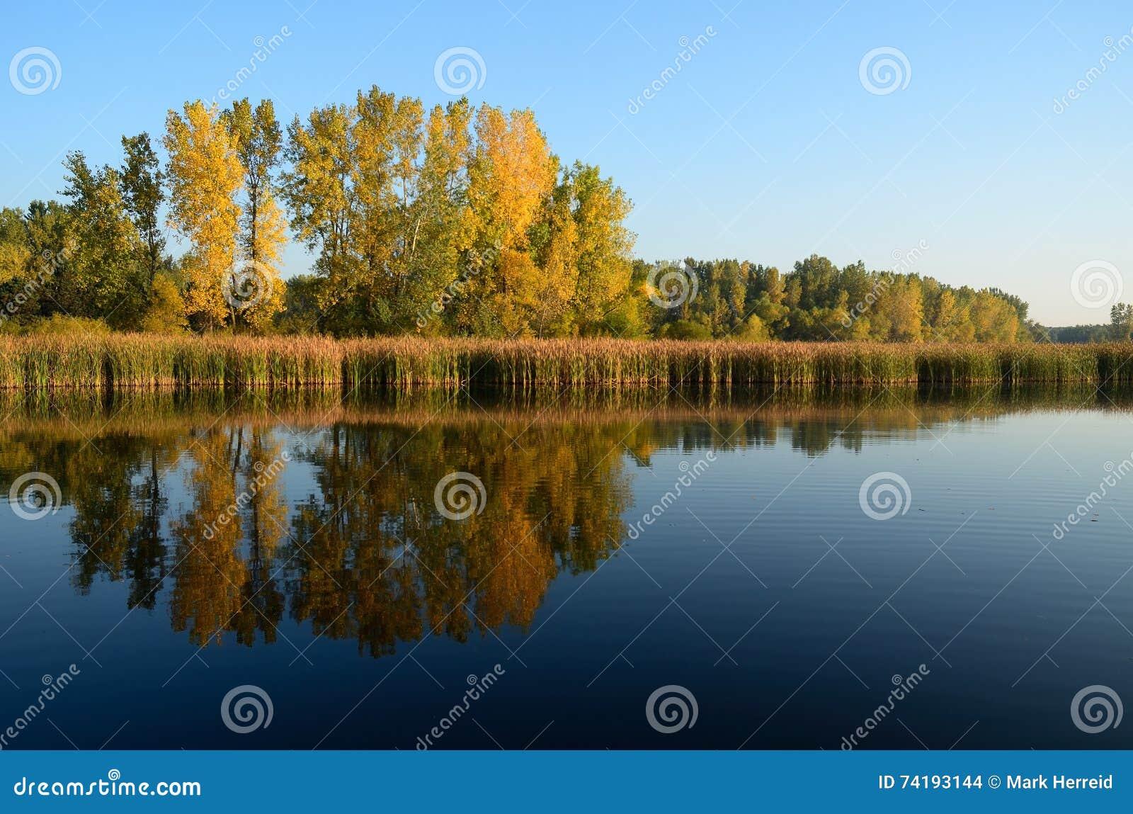 Colori di caduta riflessi su un lago