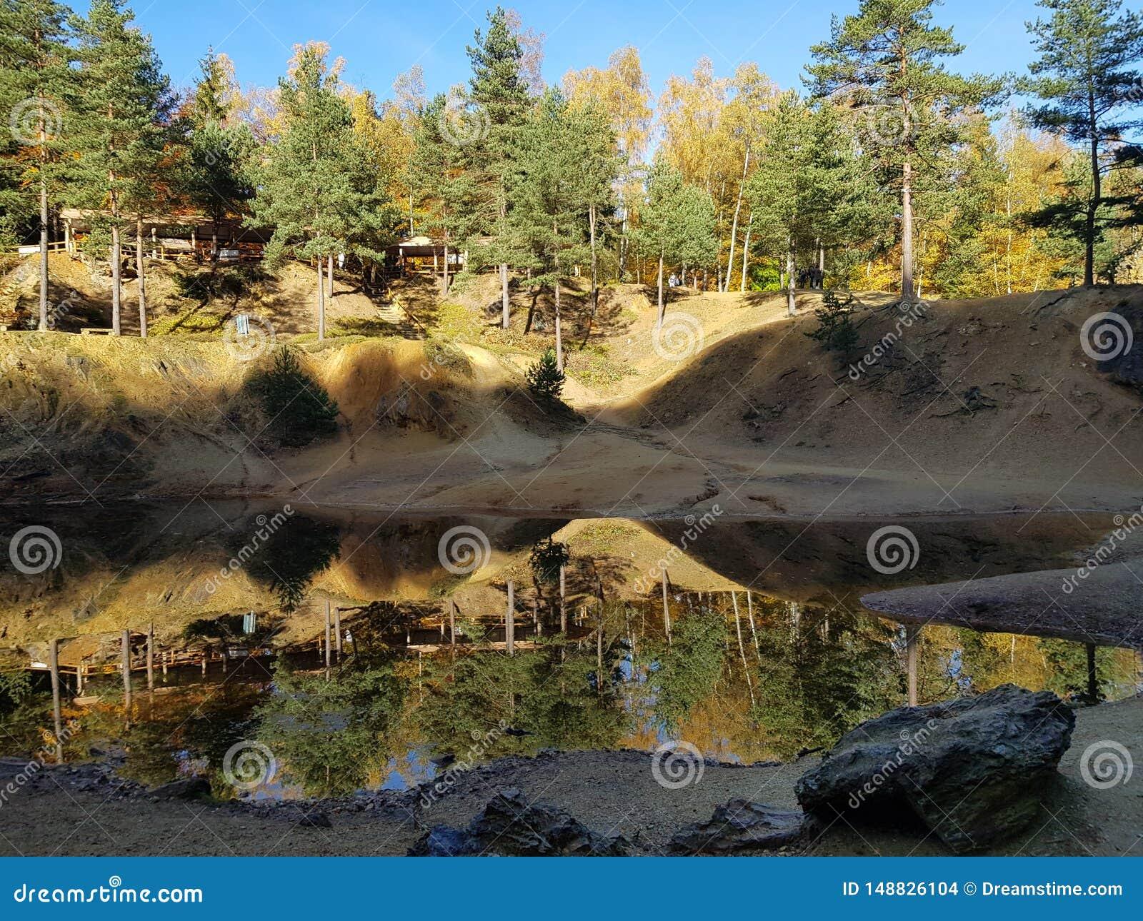 Colori il lago in foresta all autunno