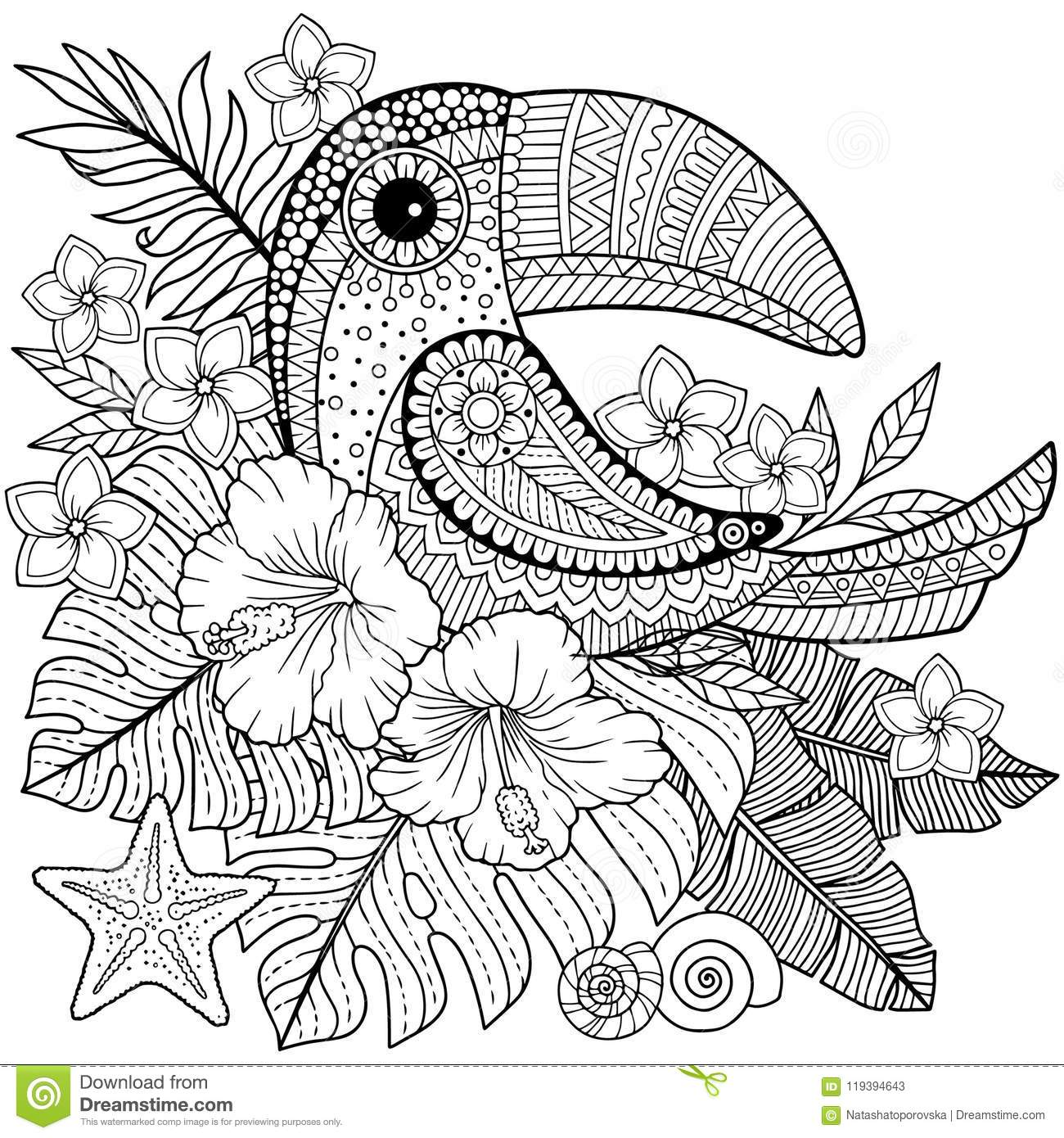 Coloring Book For Adults Toucan