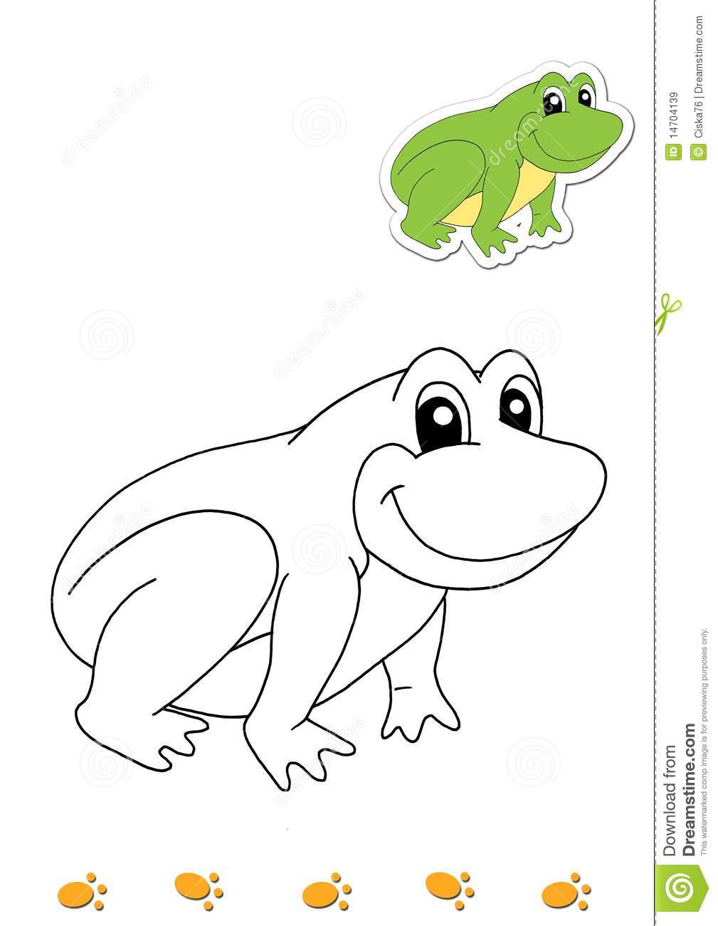coloring book of animals 14 frog