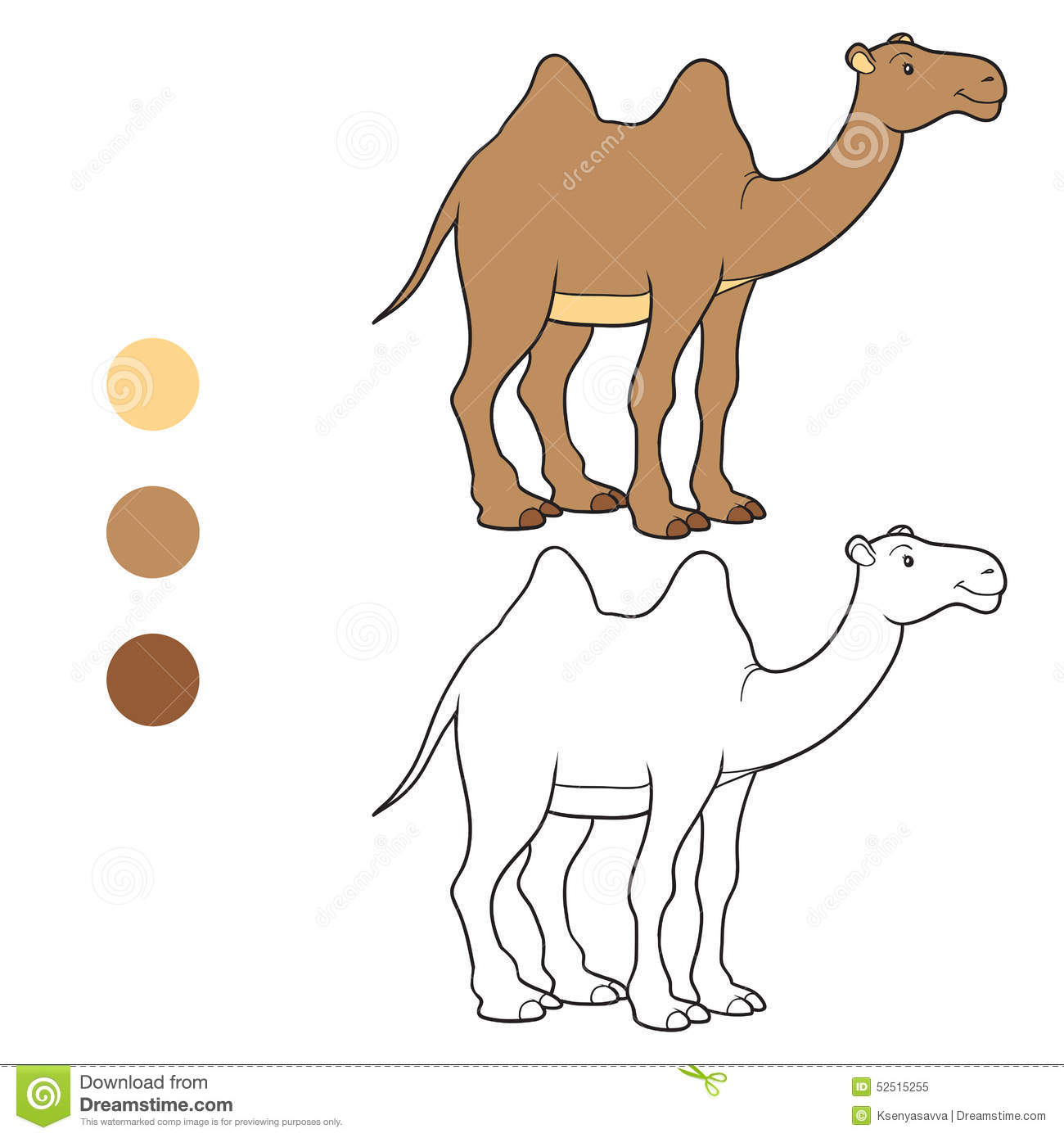 coloring book camel stock vector image 52515255