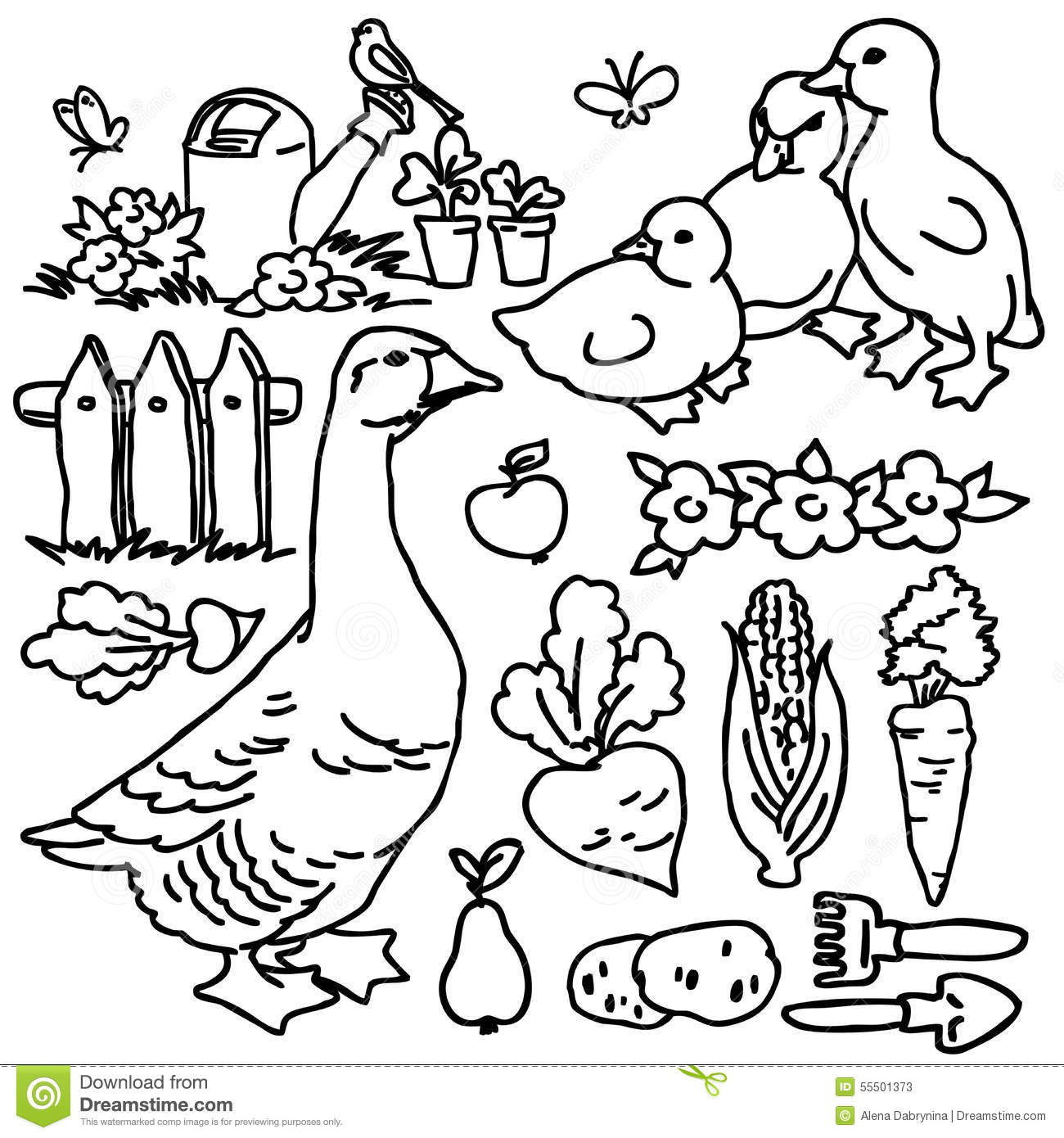 Garden Animals Coloring Pages : Coloring book cartoon farm goose and animals stock