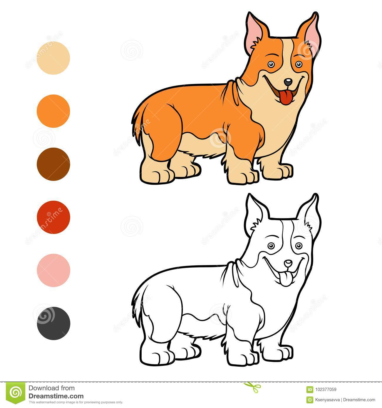 Coloring Book Dog Breeds Welsh Corgi Stock Vector Illustration
