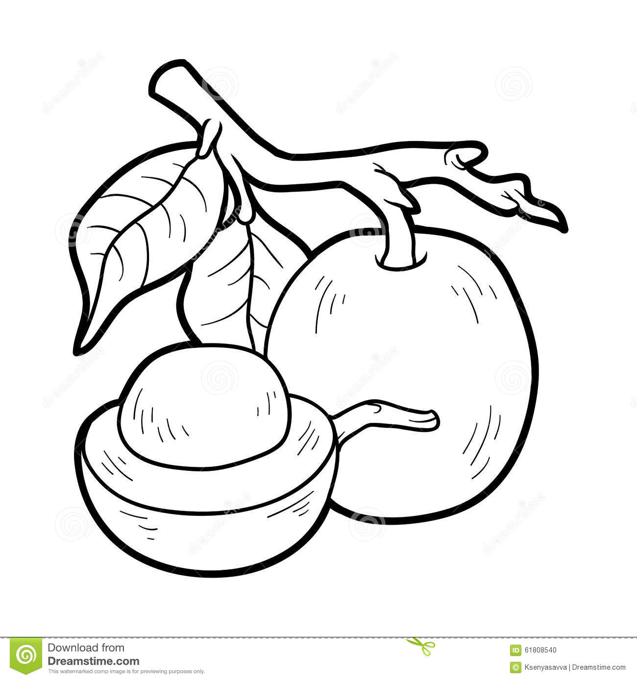 Download Coloring Book For Children Fruits And Vegetables Ximenia Stock Vector